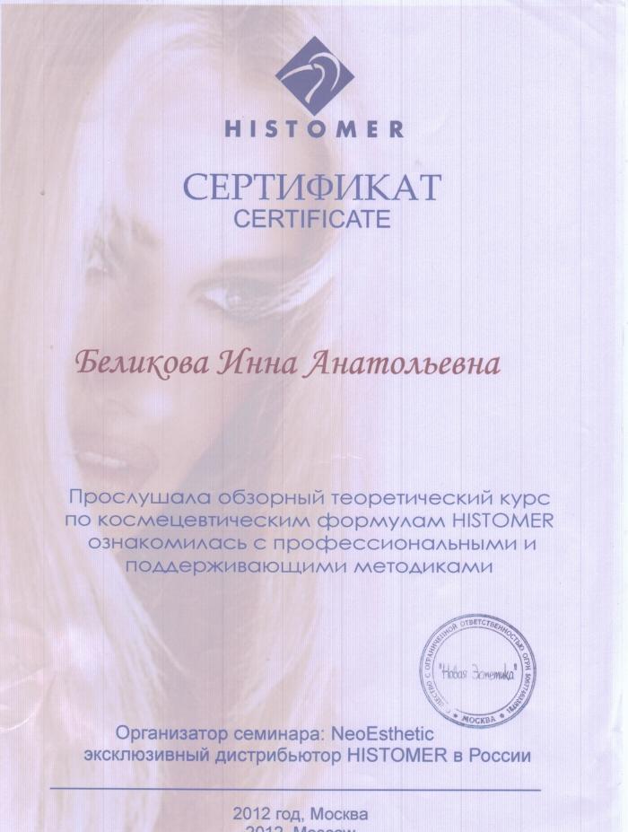 Мастер Инна Беликова Москва УЦ Новая Эстетика Обзорный теоретический курс histomer